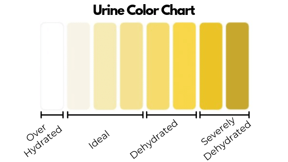 Urine chart showing how hydrated you are based on the color of your urine.