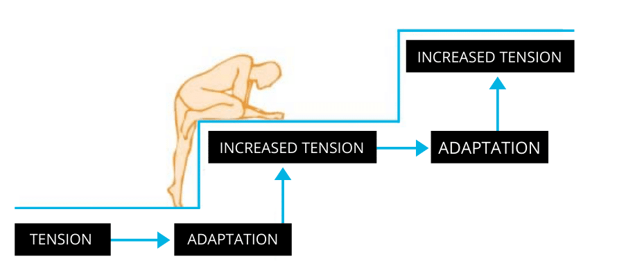Why is the progressive overload principle important